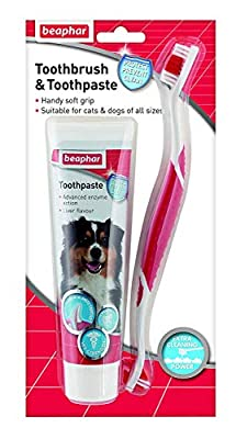 Beaphar Toothbrush and Toothpaste Kit, 100g : everything 5 pounds (or less!)