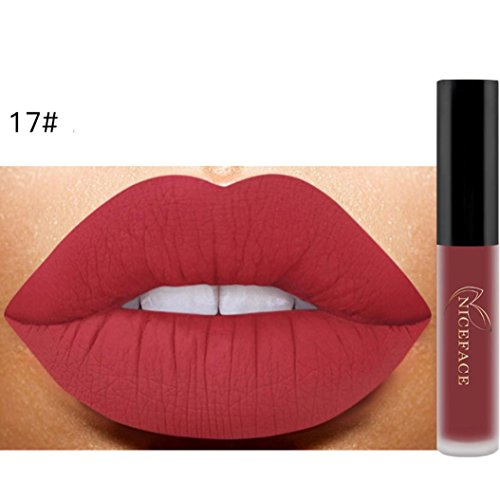 Klassische Matte Lippenstift (Beliebter Lippenstift, Yogogo Lip Matte Liquid Lipstick Wasserdichte Lip Gloss Make-up (#17))