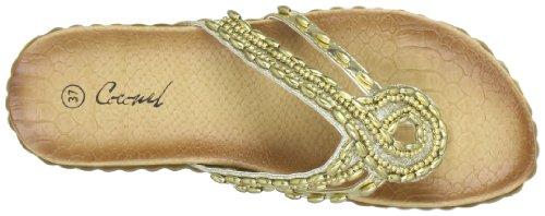 Coconel 242904.901, Sandali infradito donna Oro (Gold (Gold))
