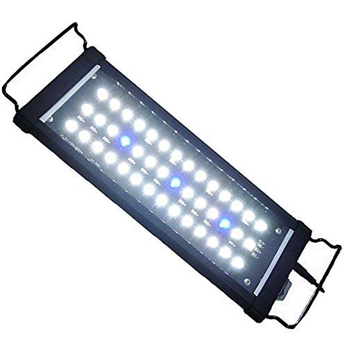 ETiME Aquarium Beleuchtung LED Aufsatzbeleuchtung Aufsetzleuchte Fisch Tank Leuchte Blau Weiß Lampe für 32-52cm Aquarium Meerwasser Süßwasser (32-52cm) -