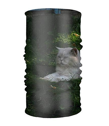 Vidmkeo copricapo multifunzionale, sciarpa, scialle, sciarpa collo, foulard, versatile e intelligente, vari disegni gatti animali fashion4