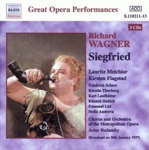 Wagner Siegfried [Import anglais]