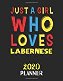 Just A Girl Who Loves Labernese 2020 Planner: Weekly Monthly 2020 Planner For Girl or Women Who Loves Labernese