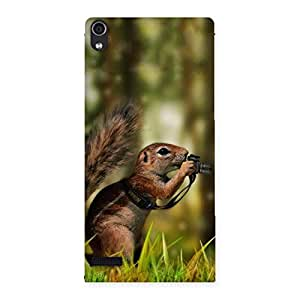 Gorgeous Squirrel Multicolor Back Case Cover for Ascend P6