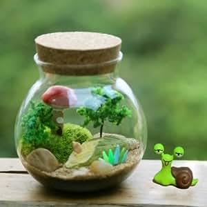 mousse plantes succulentes micro paysage vase bouteille à la maison de verre de décoration éco