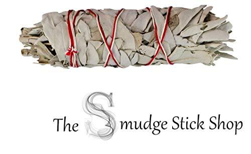Weißer Salbei-Stab Räucherwerk Smudge Stick Mittelgroße (ca. 12 bis 15 cm lang) -