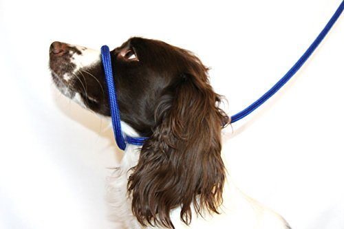 dog-field-figure-8-anti-pull-lead-halter-head-collar-blue-one-size-fits-all-super-soft-braided-nylon