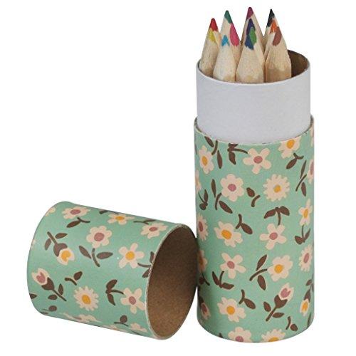 dotcomgiftshop - Papeterie diverse - Lot de 12 crayons de couleur Vintage Daisy