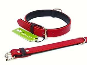 (die Pfoten) Farbe Fusion Hundehalsband rot (mittel)