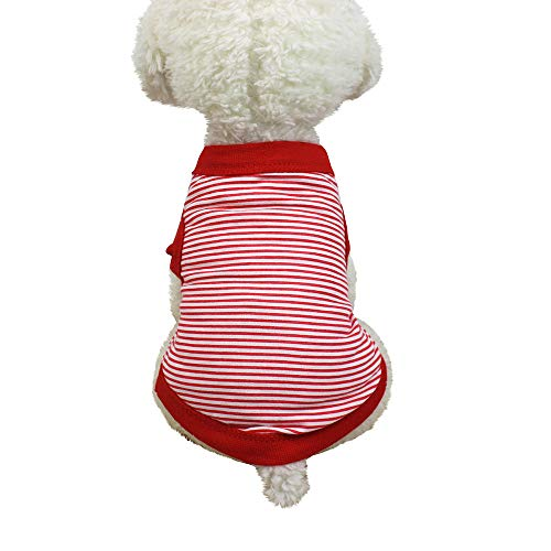 Kostüm Baumwolle Gestreifte - Smniao Sommer Haustierkleidung Hund Kleidung Kleine Hund Katze Baumwolle Gestreifte T-Shirt Weste Rock Kostüm Kleine Hund Kleid(S, Rot)