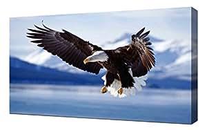 Aigle Qui Vole - Image Sur Toile