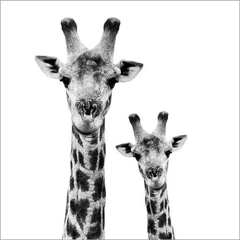 Stampa su tela 50 x 50 cm: Safari Profile Collection - Portrait of Giraffe and Baby White Edition II di Philippe HUGONNARD - poster pronti, foto su telaio, foto su vera tela, stampa su tela