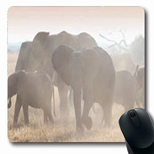 Luancrop Alfombrillas de ratón Elefantes en la Sabana Africana Polvo Grande Misty...