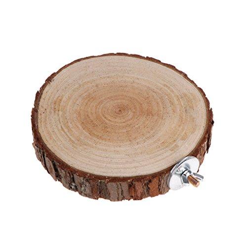 XMTPF Vogelkäfig für Papageien, mit Sitzstange, rund, Holzständer für Chinchilla, Eichhörnchen, Vögel (Grau Für Käfige Vogel Afrikanischen)