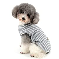 Chihuahua ou chiot Basketball Débardeur Taille M voir photo