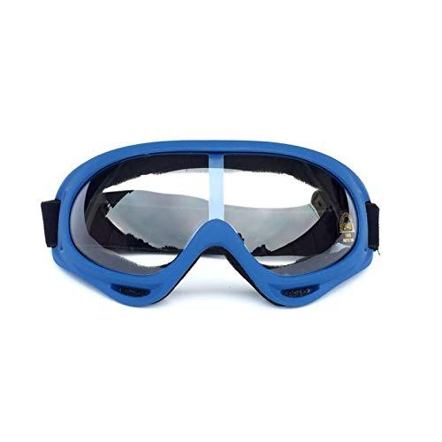 Daesar Gafas Seguridad Mujer Gafas Protectoras Antipolvo