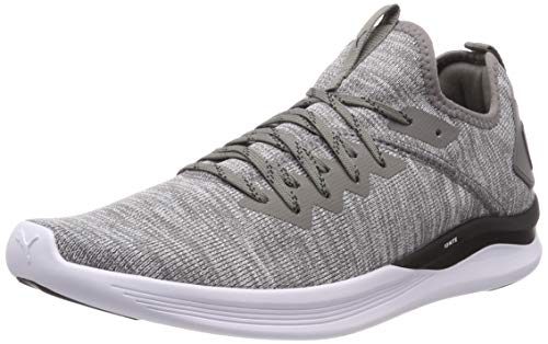 Puma Herren Ignite Flash Evoknit Cross-Trainer, Grau (Steel Gray-Puma Black 18), 42 EU -
