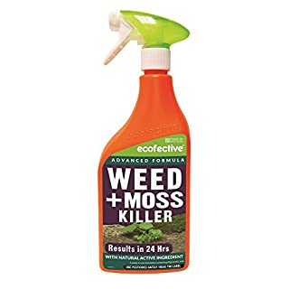 Ecofective Path & Patio Weed & Moss Killer 1L Ready to Use