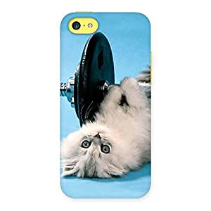 Stylish Fit Cat Multicolor Back Case Cover for iPhone 5C