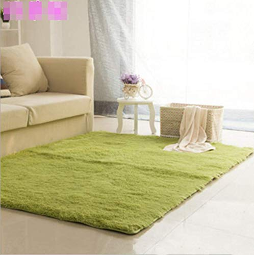 CNFQ Shaggy alfombras Pelo Largo alfombras Salon alfombras