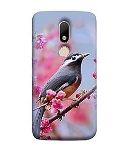 PrintVisa Designer Back Case Cover for Motorola Moto M (Bird Branch Flowers Bright Soothing Image)