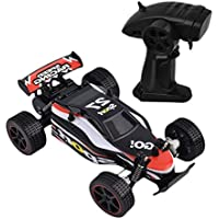 1/20 2WD Drive System 15 - 25 kmh Durable Off-road Tires High Speed Radio Remote control RC RTR Racing buggy Car Off Road - Compare prices on radiocontrollers.eu