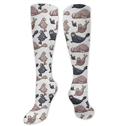 ouyjian Seals Illustration Sea Lion Women&Men Socks Dress Socks Length 19.7in/Width 3.4in Polyester Material Knee High Socks Girls Socks Mid Stockings Personality Socks