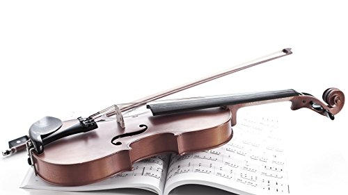 Music Violin Wall Poster  available at amazon for Rs.199