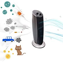 Luftreiniger Ionisator Ionisierer | von Allergikern empfohlen | entfernt Staub, Pollen, Schadstoffe und Geruchsstoffe | ideal für Raucher | für Räume bis 20m² | Deutscher Hersteller