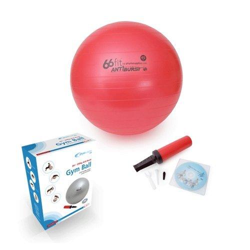 66Fit Gymnastikball mit Pumpe & DVD (nur in englischer Sprache), silber, 65 cm BP-GYM65CB (7 In Pilates Ball)