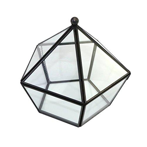 FutuHome Unregelmäßige Geometrische Glas Terrarium Air Pflanzen Inhaber Tabletop Miniatur Container Sukkulenten Moos Farn Pflanzer Display Box Fall Für Gegenwa - Schwarzes Pentagon L, wie beschrieben -
