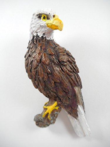 Preisvergleich Produktbild Magnet Adler 7 x 4 cm Greifvogel Raubvogel Afrika Vogel Figur Deko COR 403 C