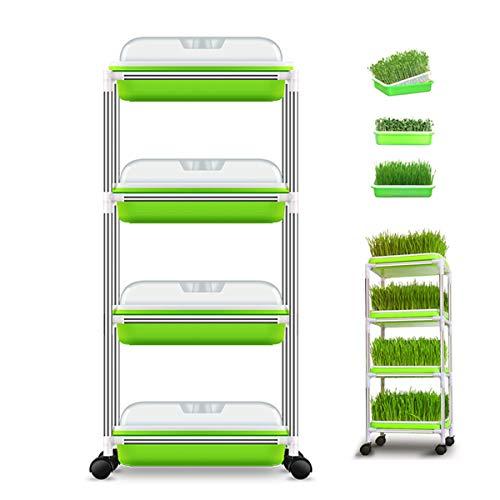 Regale Regal 8 Starter (USDREAM 4-fach Samenspachtel Bio-Bohnen Boden frei Sprossen Grower Kit und Aufbewahrungsschalen für Zuhause Küche Verwendung, mit Edelstahlrahmen Regal und Deckel)