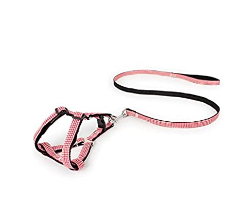 Langlebige Nylon Hundeleine Seil Zweifarbige Lattice Patch Chest Zurück Pet Traction Seil, Trainingsleine Slip Lead Traction Seil Walk Pet Coupler Harness, verstellbare Nylon Pet Seil Kette Training Walking Collar Leine für große / mittlere / kleine Hund (gelb) ( Color : Red , Size : S )