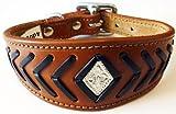 25,4–30,5cm tan-brown Fisch Knochen Leder Whippet Greyhound Halsband