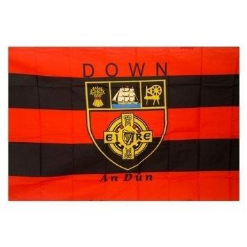 IRLAND OFFIZIELLE GAA FLAG COUNTRY Kamm DOWN 152cm x91cm sehr begrenzt verfügbar -