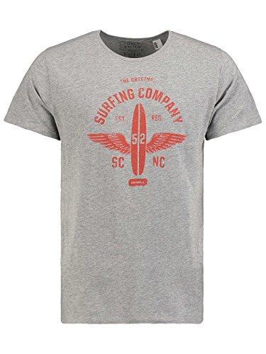 O'Neill Herren Lm Fontier T-Shirt silver melee