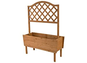Roots & Shoots Wood Planter with Trellis Back Panel