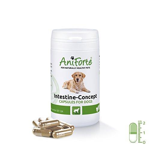 aniforte-intestine-concept-dog-capsules-50-pieces-100-pure-natural-well-tolerated-treatment-preventi