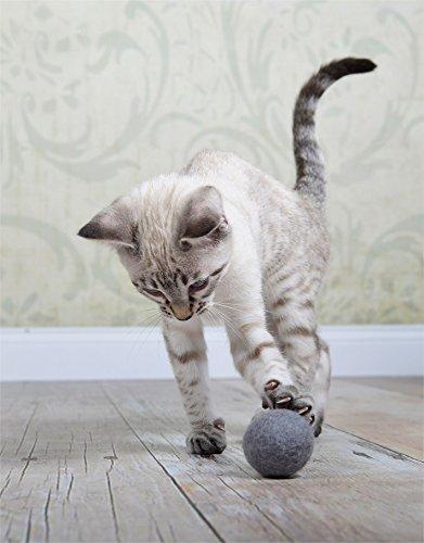 stylecats 3 Katzenspielzeuge Filzbälle, Filzbälle für die Katze, 100% Schurwolle, Handmade, 100% Made in Germany (Hellgrau)