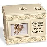 Angelstar 12,7cm Pet Urne für Hunde