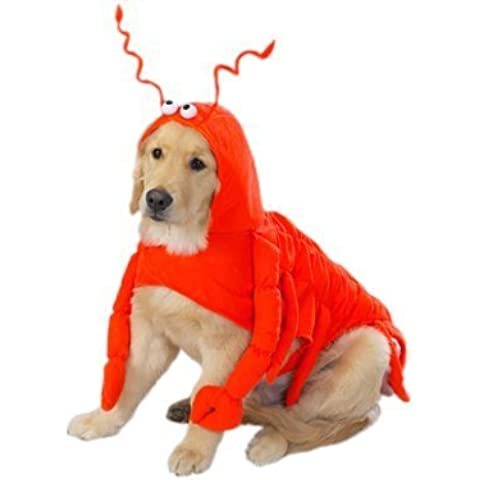 Casual Canine Lobster Paws Dog Costume, Small (fits lengths up to 12