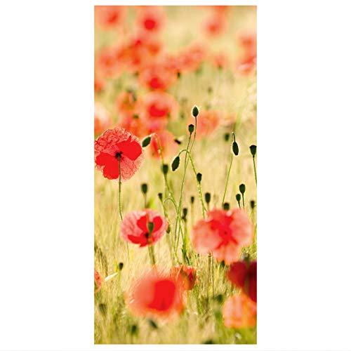 Flächenvorhang Sommer Mohnblumen 250x120cm - Hängende Raumteiler Raumteiler Raumteiler Vorhang Raumteiler Vorhang Raumteiler Paneelrollo Wandbild Deko - Maße: 250x120cm inkl. Kleiderbügel transparent