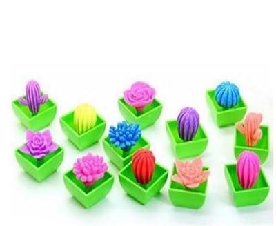 takestop Set 8pièces Plante grasse petites qui s'étend avec l'eau Cactus Jeu Décoration Aquarium expérience couleurs motifs aléatoires