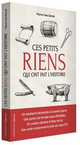 Ces petits riens qui ont fait l'histoire de France : hasards, coïncidences et malchances, de Jules César à Charles de Gaulle