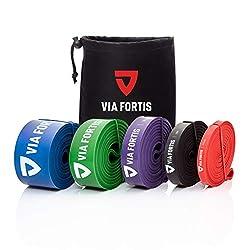 VIA FORTIS Premium Fitnessbänder mit Tasche und Übungsanleitung - Resistance Bands für Fitness, Calisthenics oder Crossfit Workout - Klimmzug-Band/Widerstandsband in verschiedenen Größen