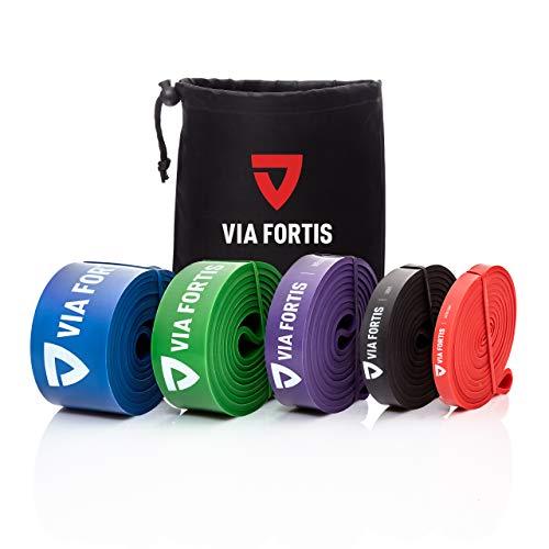 VIA FORTIS Premium Fitnessbänder mit Tasche und Übungsanleitung - Resistance Bands für Crossfit, Calisthenics oder Freeletics Workout - Klimmzug-Band/Widerstandsband in verschiedenen Größen