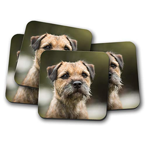 #15940 Untersetzer mit Border Terrier, Hund, Welpe, niedlich, freche Tiere, Geschenk, 4 Stück -