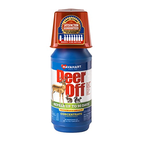 Deer Off 32 Ounce Deer, Rabbit, and Squirrel Repellent Concentrate DF32CP-4 (Squirrel Repellent)