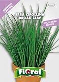 Sementi di piante aromatiche e officinali in bustina ad uso amatoriale (ERBA CIPOLLINA)